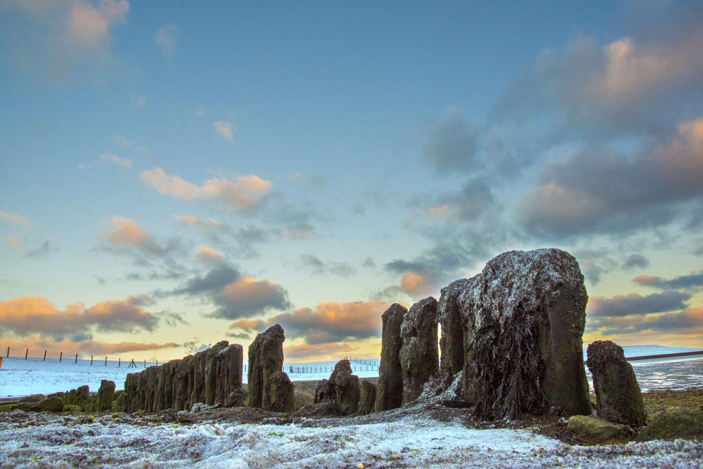 Winterlandschap bij Bierum