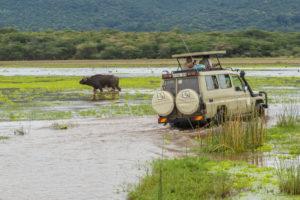 Fotosafari Kenia-Tanzania. Een fotoreis om de big five te spotten.